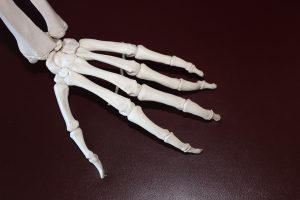 pain in the bones and joints